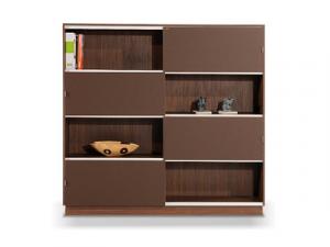 Bookcase and Binder Storage