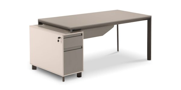 میز کارمندی نکا D از مجموعه کارشناسی نکا، دارای فایل دو کشو با قابلیت بایگانی پرونده است. وجود محفظه دکوراتیو در قسمت جلوی میز زیبایی این محصول را دوچندان کرده است.